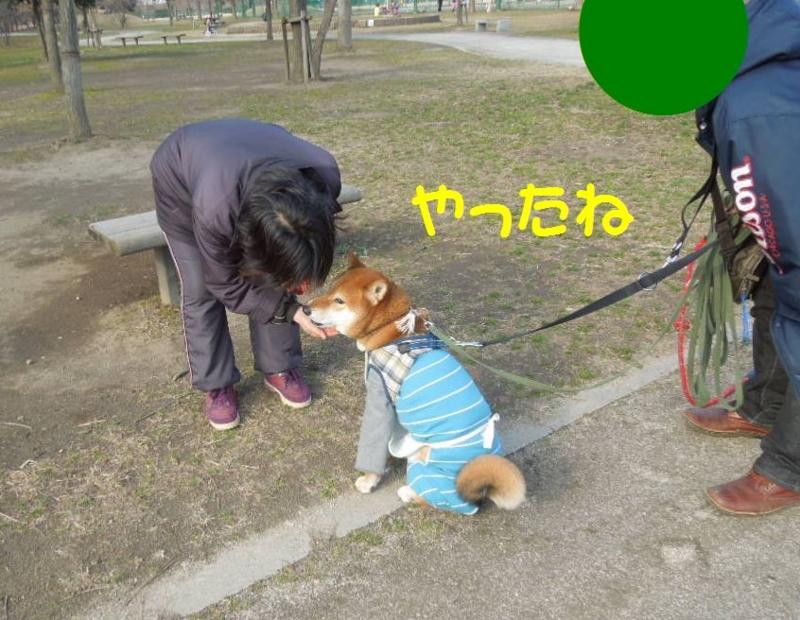 f:id:miyuki1967:20130304103105j:image:w400