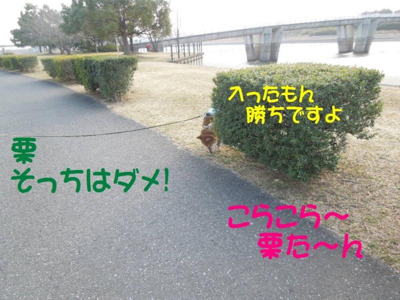 f:id:miyuki1967:20130304103112j:image:w400