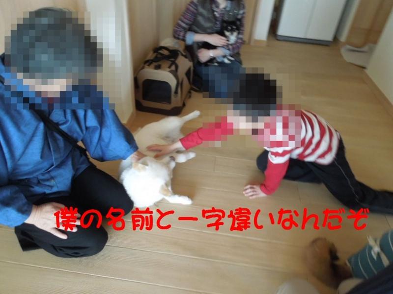 f:id:miyuki1967:20130409112131j:image:w400