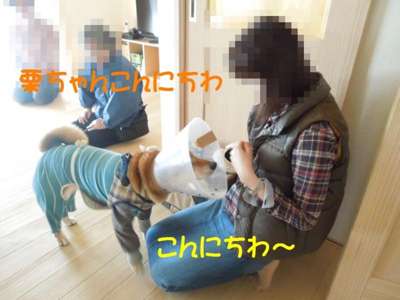f:id:miyuki1967:20130409112138j:image:w400