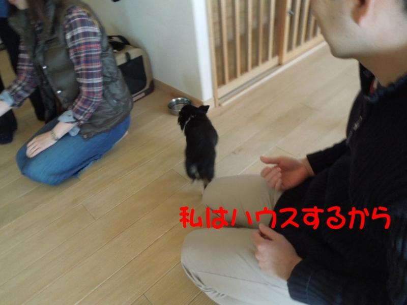 f:id:miyuki1967:20130409112139j:image:w400