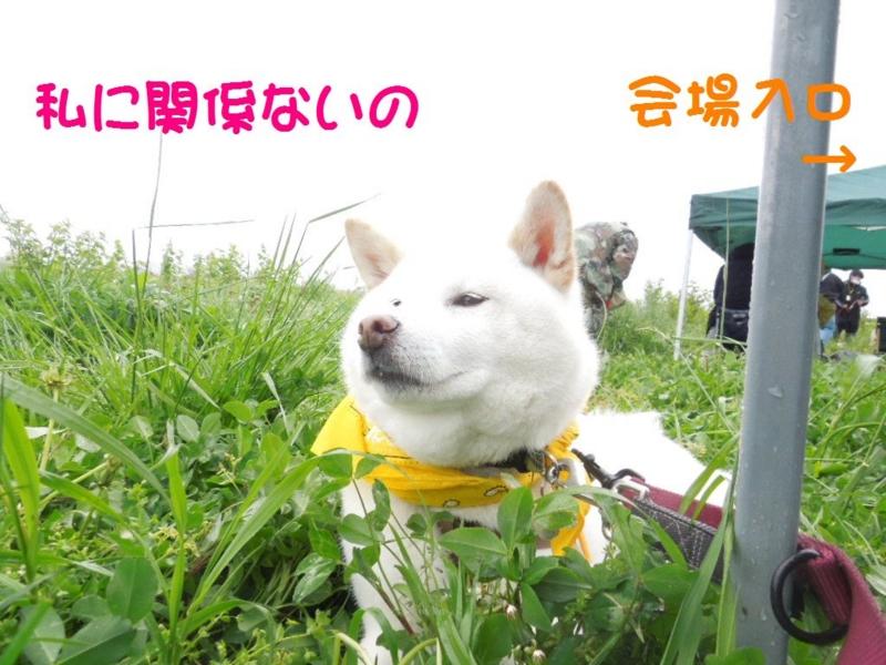 f:id:miyuki1967:20130422103346j:image:w400
