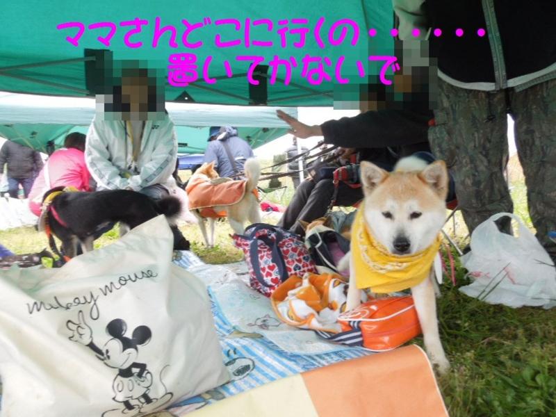 f:id:miyuki1967:20130422104405j:image:w400
