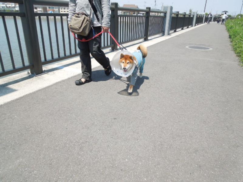 f:id:miyuki1967:20130505115717j:image:w400