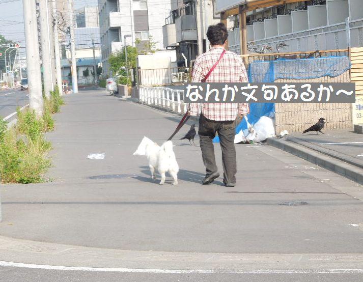 f:id:miyuki1967:20130605102015j:image:w400