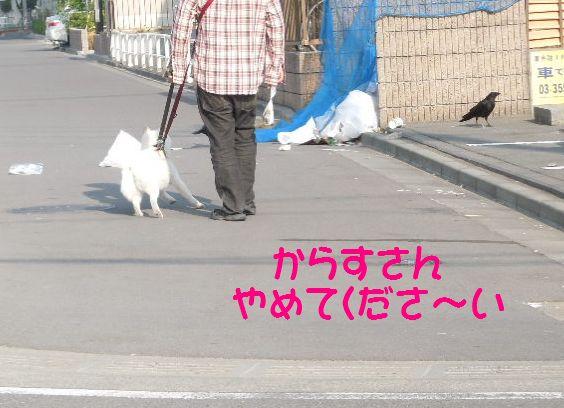 f:id:miyuki1967:20130605102016j:image:w400