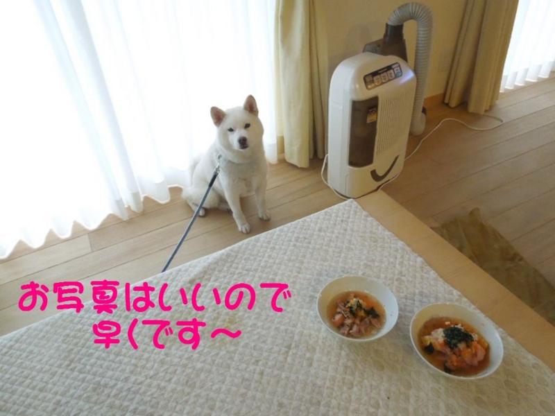 f:id:miyuki1967:20130619115239j:image:w400