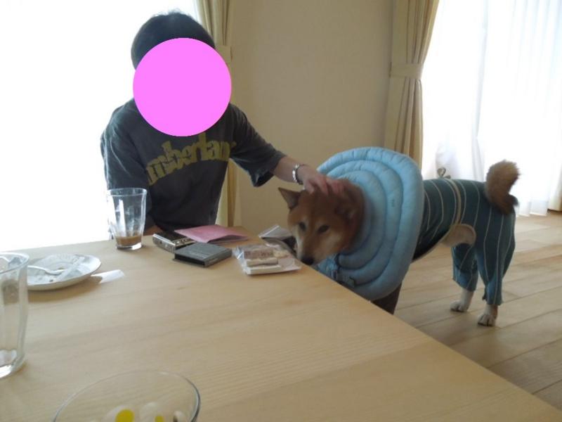 f:id:miyuki1967:20130818065743j:image:w400