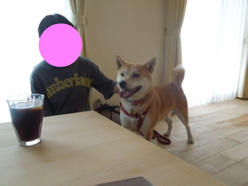 f:id:miyuki1967:20130818070205j:image:w400