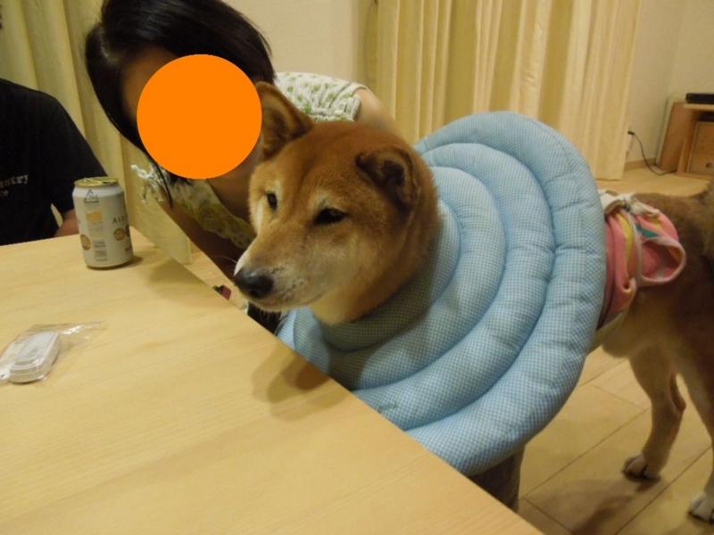 f:id:miyuki1967:20130819104628j:image:w400