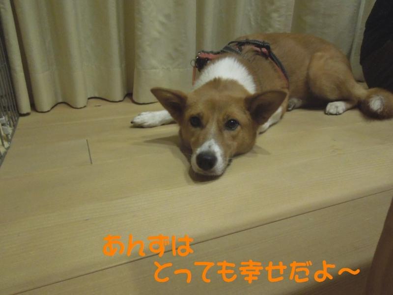 f:id:miyuki1967:20130819104735j:image:w400