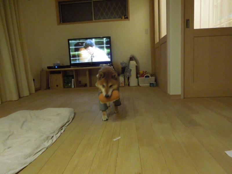 f:id:miyuki1967:20131126223959j:image:w400