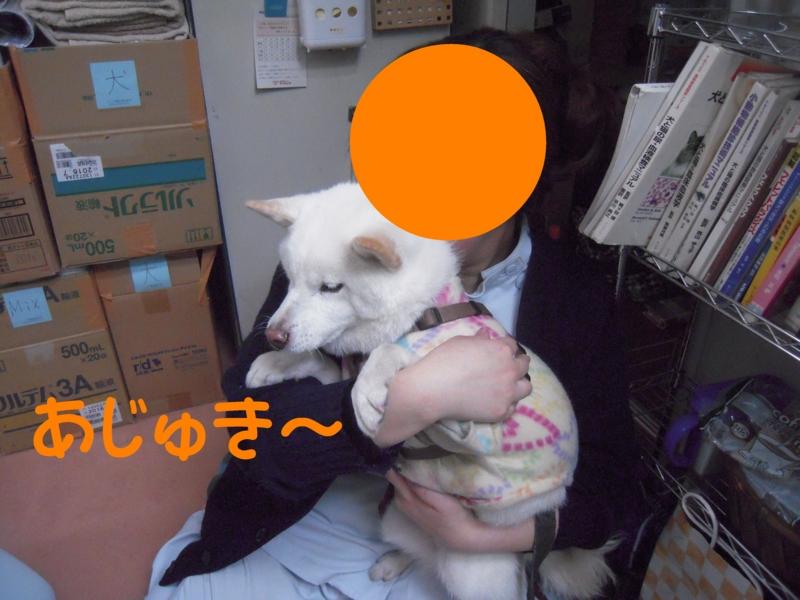 f:id:miyuki1967:20131203105103j:image:w400
