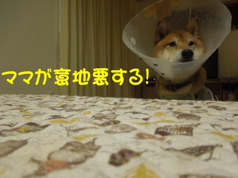 f:id:miyuki1967:20131204101210j:image:w400