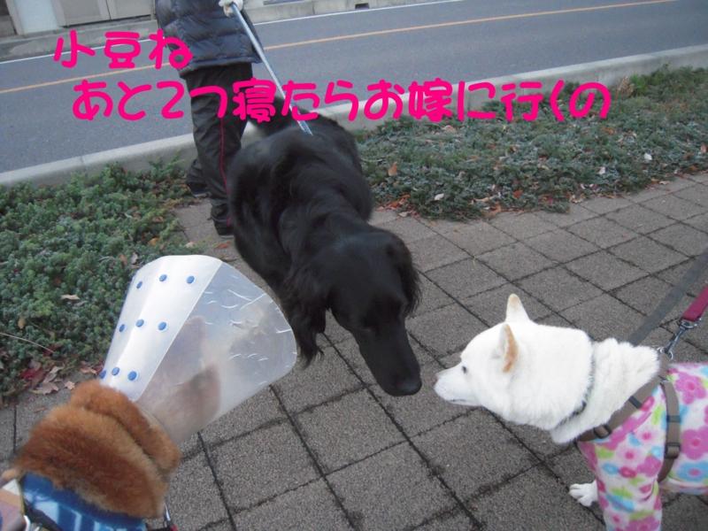 f:id:miyuki1967:20131213114317j:image:w400