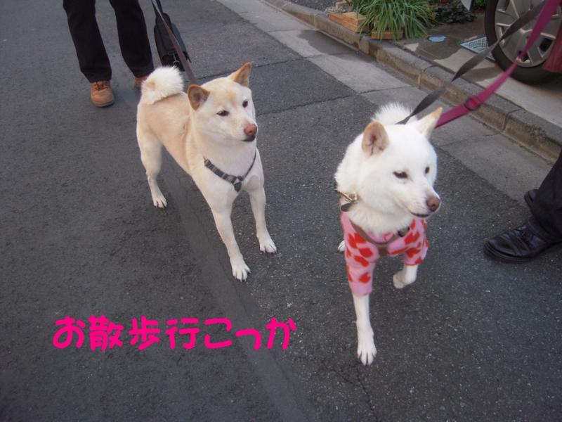 f:id:miyuki1967:20131217114348j:image:w400