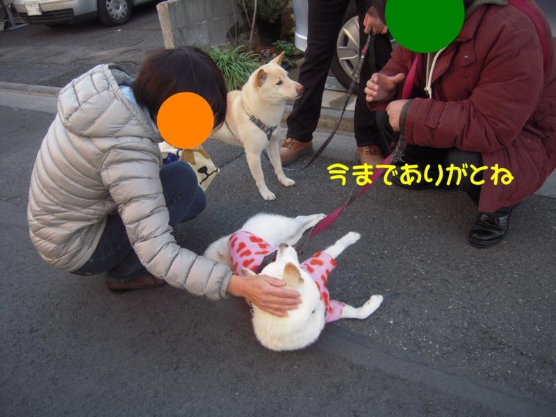 f:id:miyuki1967:20131217114921j:image:w400
