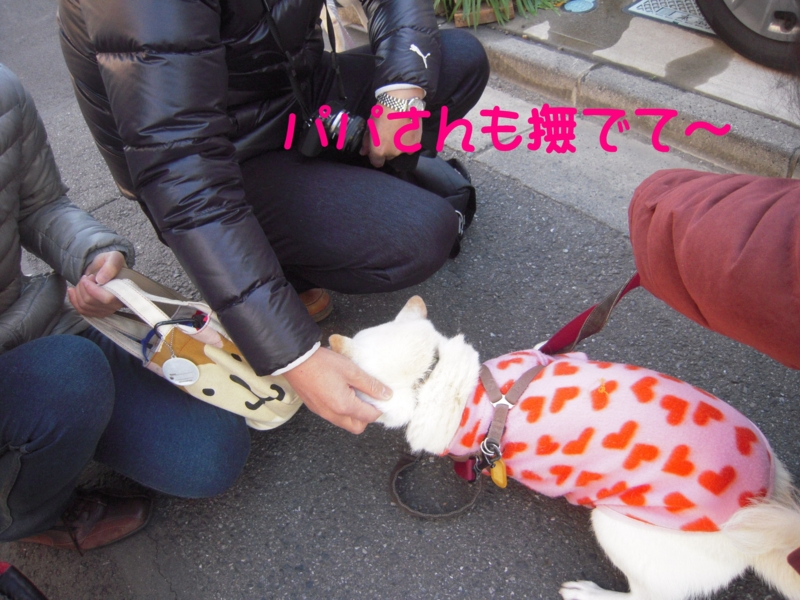 f:id:miyuki1967:20131217115244j:image:w400