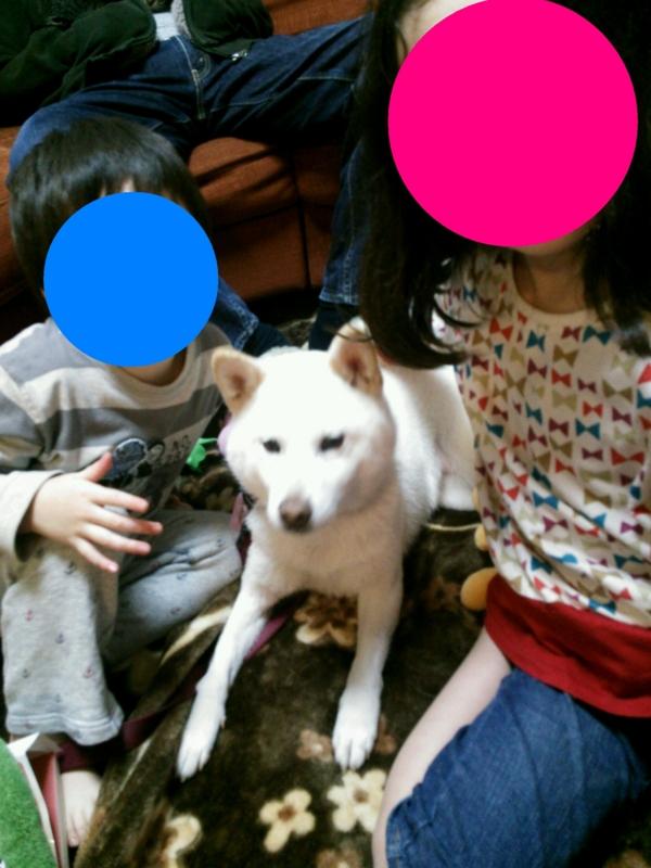 f:id:miyuki1967:20131226110502j:image:w400