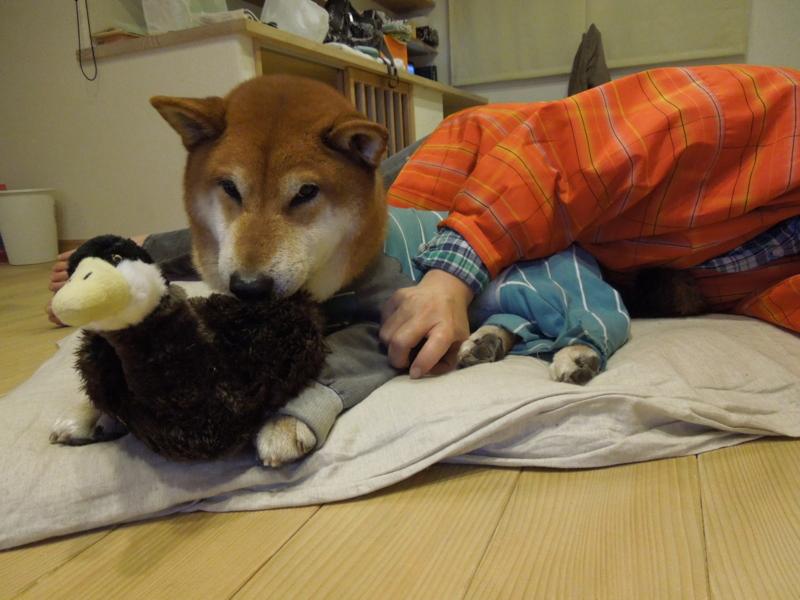 f:id:miyuki1967:20131231203917j:image:w400