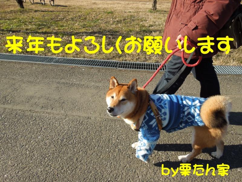 f:id:miyuki1967:20131231210753j:image:w400