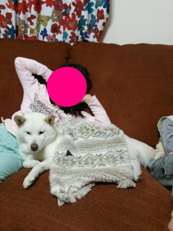 f:id:miyuki1967:20140110112519j:image:w400