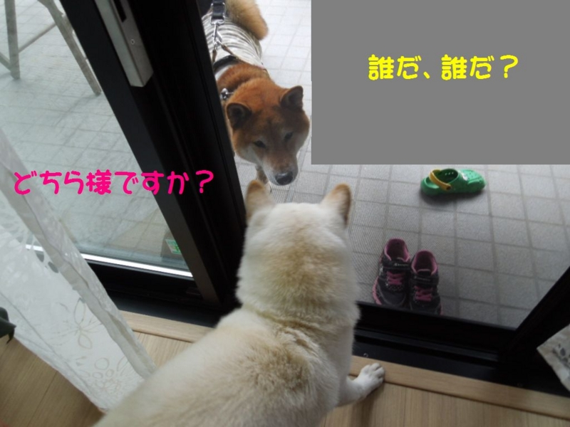 f:id:miyuki1967:20140120094249j:image:w400