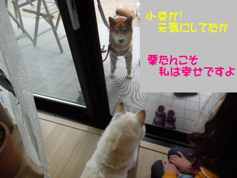 f:id:miyuki1967:20140120095323j:image:w400