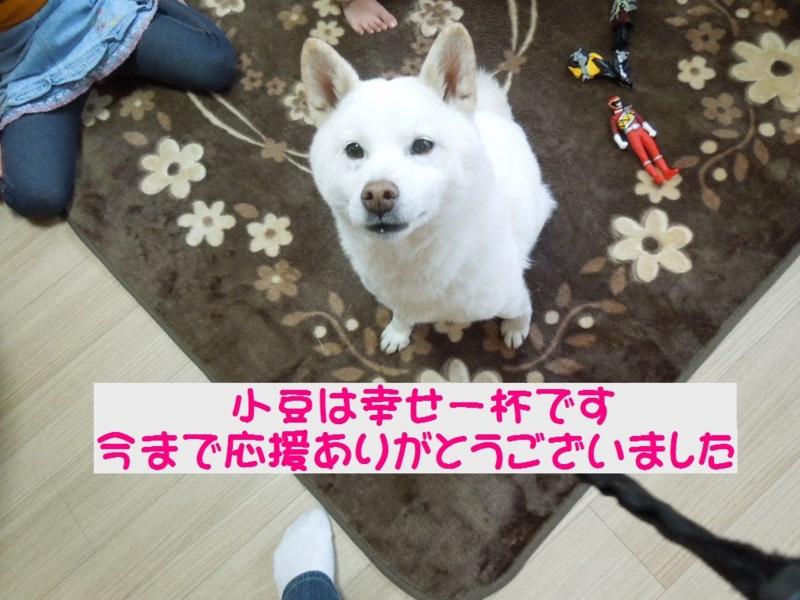 f:id:miyuki1967:20140120101247j:image