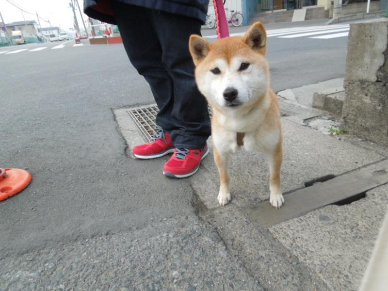 f:id:miyuki1967:20140203065959j:image:w400