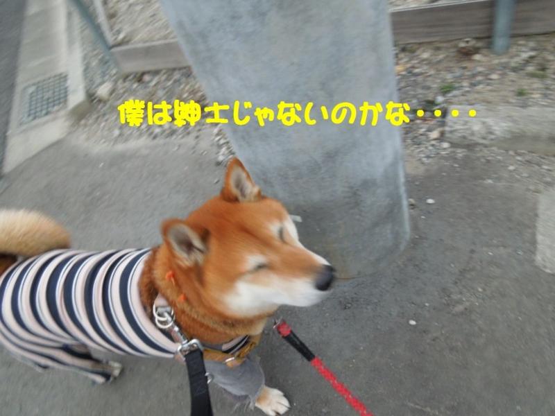 f:id:miyuki1967:20140207114601j:image:w400