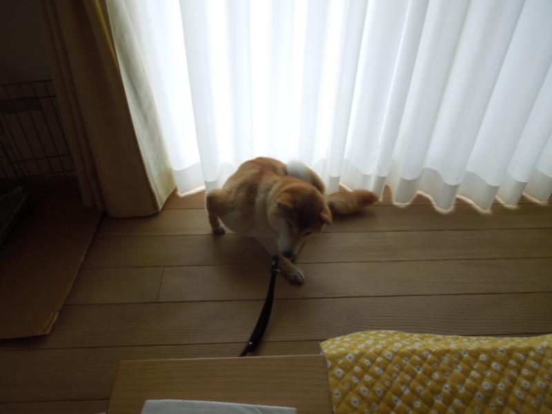 f:id:miyuki1967:20140211111239j:image:w400
