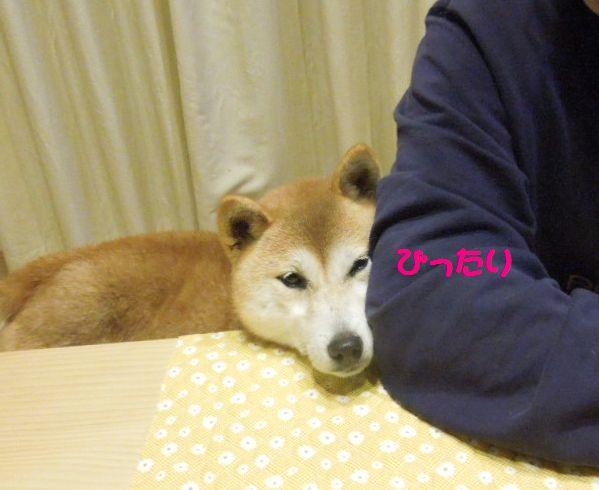f:id:miyuki1967:20140212105644j:image:w450