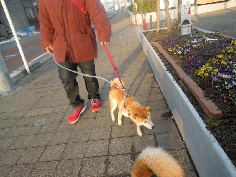 f:id:miyuki1967:20140218065944j:image:w400