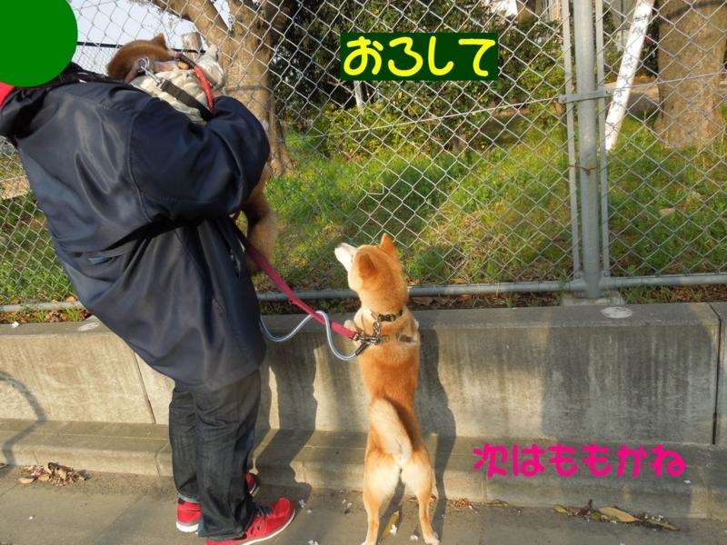 f:id:miyuki1967:20140402103734j:image:w400
