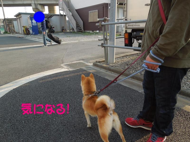 f:id:miyuki1967:20140409114224j:image:w400