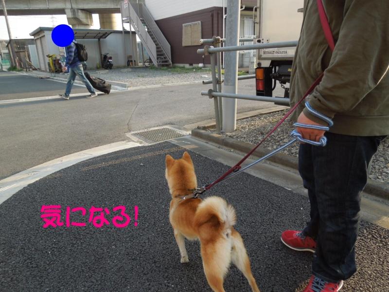 f:id:miyuki1967:20140409114336j:image:w400
