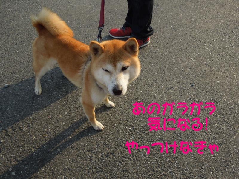 f:id:miyuki1967:20140409114433j:image:w400