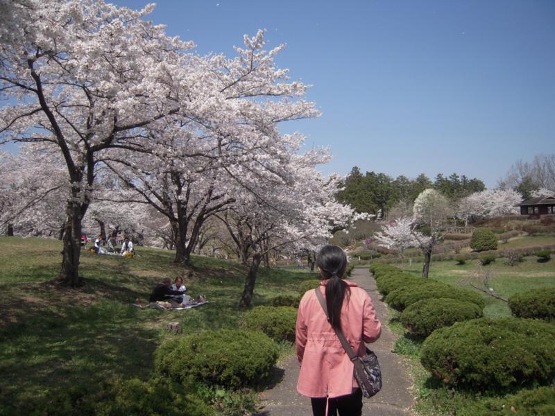 f:id:miyuki1967:20140412121520j:image:w400