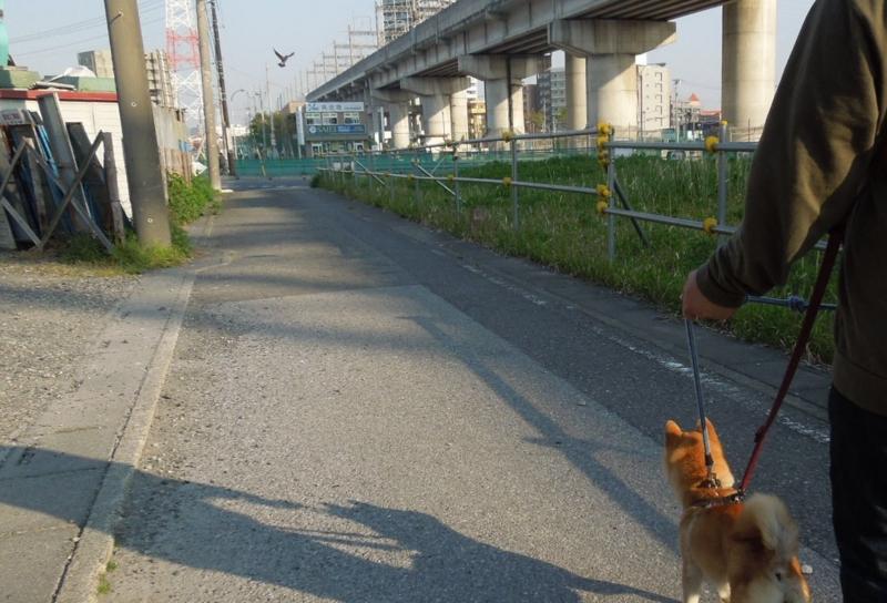f:id:miyuki1967:20140415103544j:image:w400