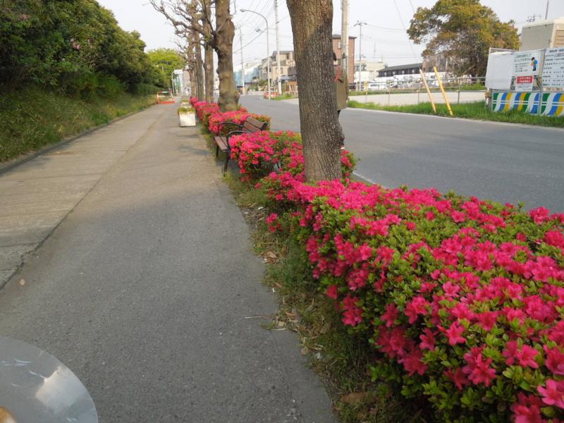 f:id:miyuki1967:20140416065752j:image:w400