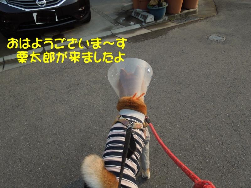 f:id:miyuki1967:20140416120134j:image:w400