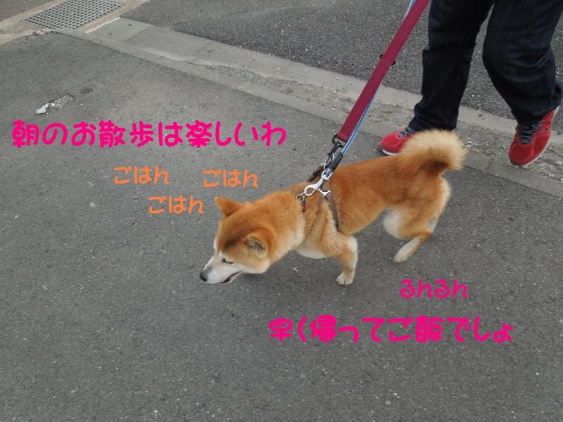 f:id:miyuki1967:20140416121256j:image:w400