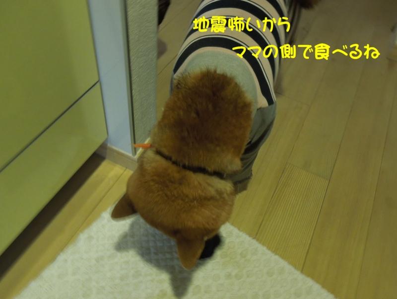 f:id:miyuki1967:20140418095852j:image:w400
