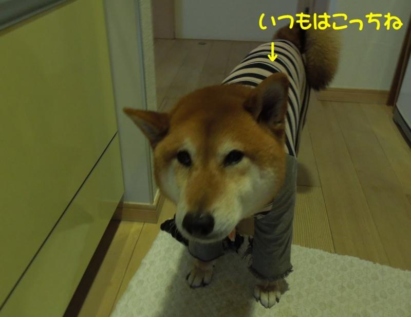 f:id:miyuki1967:20140418100117j:image:w400
