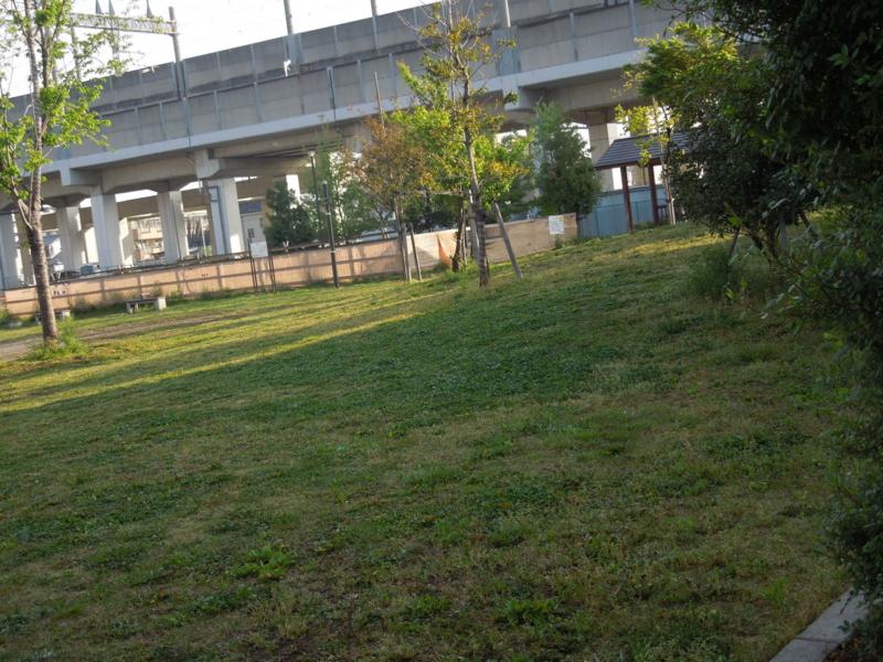 f:id:miyuki1967:20140422102916j:image:w400