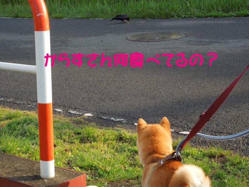 f:id:miyuki1967:20140422103333j:image:w400
