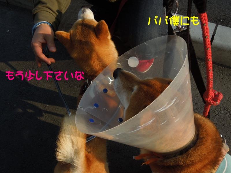 f:id:miyuki1967:20140425111714j:image:w450