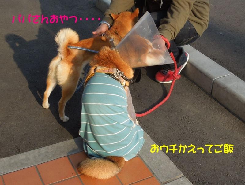f:id:miyuki1967:20140425111834j:image:w450