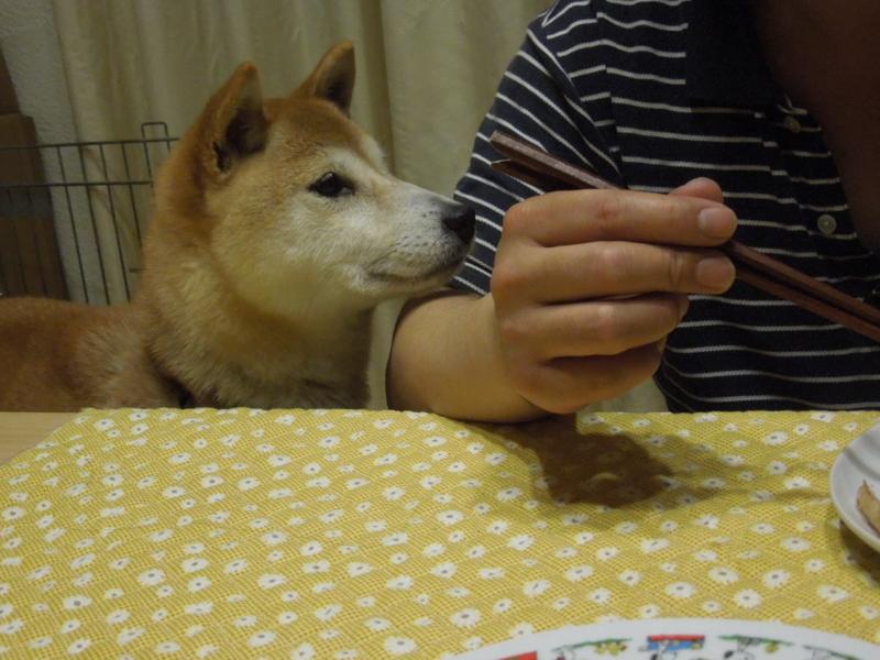 f:id:miyuki1967:20140507113334j:image:w450
